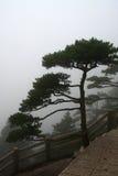 Berg Huangshan, Anhui, China Stockfotografie