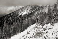 Berg Humphrey drapiert im Schnee lizenzfreie stockfotos