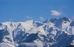 Berg i Almaty Royaltyfria Bilder