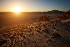 Berg i den Sinai öknen på solnedgången Fotografering för Bildbyråer