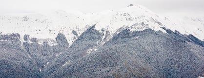 Berg i den Sochi semesterorten Arkivfoton