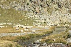 Berg i den Tena dalen, Pyrenees Panticosa Arkivfoto