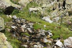 Berg i den Tena dalen, Pyrenees Panticosa Royaltyfri Fotografi