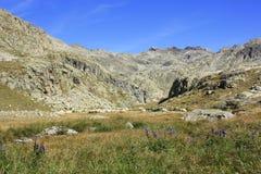 Berg i den Tena dalen, Pyrenees Panticosa Royaltyfri Foto