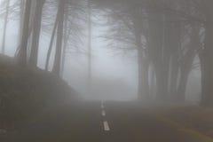 Berg i dimman i molnet av ön av madeiran, Portugal Royaltyfri Bild