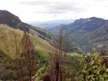 Berg i grönska Arkivfoton