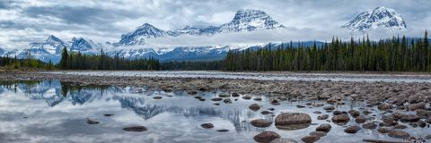 Berg i Jasper National Park längs den Athabasca floden arkivbilder
