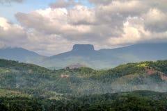 Berg i misten i Sri Lanka Arkivbild