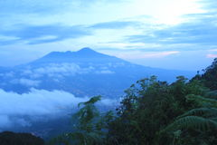 berg i morgonen Royaltyfri Fotografi