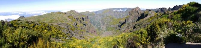 Berg i norden av ön av madeiran Royaltyfria Foton