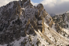 Berg i parken Royaltyfri Foto