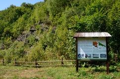 Berg i Polen Bieszczady arkivfoton