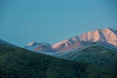 Berg i snön royaltyfri foto