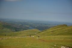 Berg i Snowdonia Fotografering för Bildbyråer