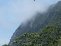 berg i Sri Lanka Arkivbild