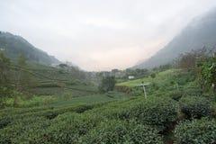 Berg i Taiwan Royaltyfri Bild