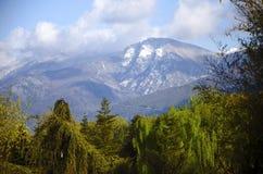 Berg i vår Fotografering för Bildbyråer