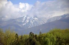 Berg i vår Royaltyfri Foto