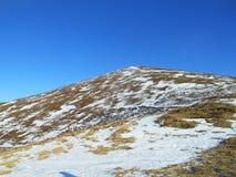 Berg i vinter, Carpathians, Ukraina royaltyfri fotografi