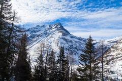 Berg i vintern arkivfoto