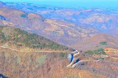 Berg ijzige lanscape, de winterscène royalty-vrije stock afbeeldingen