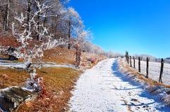 Berg ijzige lanscape, de winterscène royalty-vrije stock foto's
