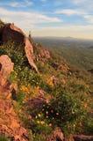 Berg im Frühjahr Stockfotografie