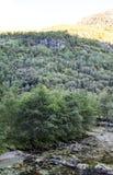 Berg im Süden von Norwegen Stockfotos