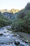 Berg im Süden von Norwegen Stockbild