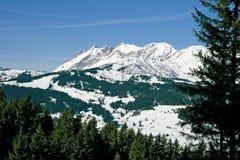 Berg im Winter lizenzfreies stockfoto