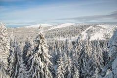 Berg im Winter Stockfotografie