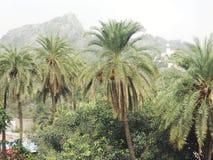 Berg in Indien Stockbild
