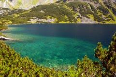 Berg lake Fotografering för Bildbyråer