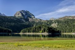 Berg lake arkivbilder