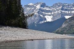 Berg lakeshore nära Banff, Alberta fotografering för bildbyråer