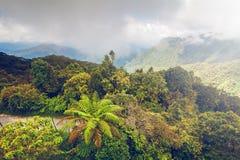 Berg landskap i Cameron högländer Arkivbilder
