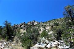 Berg Lemmon, Tucson, Arizona, Vereinigte Staaten stockbild