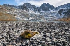 Berg lopp, natur, härligt ställe, sjöar, floder arkivbild