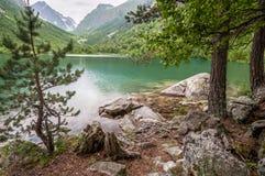 Berg lopp, natur, snö, moln, sjöar arkivbilder