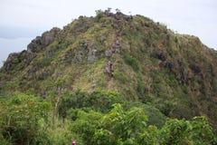 Berg Maculod Stockbilder