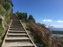 Berg Maunganui Stockbild