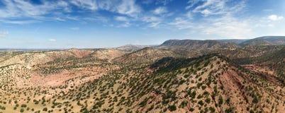 Berg med arganträd i Marocko royaltyfri bild