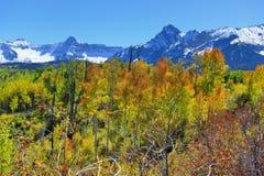 Berg med den färgrika grön och röd aspen för guling, under lövverksäsong Fotografering för Bildbyråer