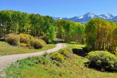 Berg med den färgrika grön och röd aspen för guling, under lövverksäsong Royaltyfria Foton