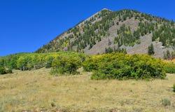 Berg med den färgrika grön och röd aspen för guling, under lövverksäsong Arkivbilder