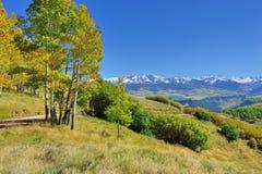 Berg med den färgrika grön och röd aspen för guling, under lövverksäsong Royaltyfri Bild