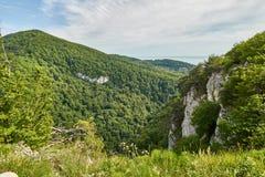 Berg med en brant stenig lutning och dal med den tjocka gröna skogen under arkivbilder