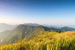 Berg med Phuchifa den nordostliga chiangraien Thailand Arkivfoto