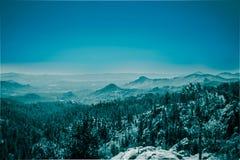 Berg med skogen i dimma, Black Hills nationalskog, SD, USA royaltyfri bild