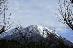 Berg med snön royaltyfria foton